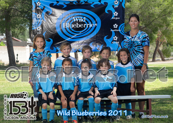 -wild blueberries