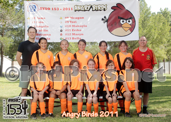 -angry birds